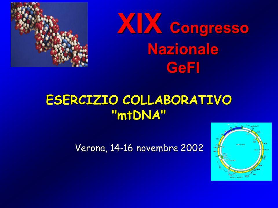 ESERCIZIO COLLABORATIVO mtDNA XIX Congresso Nazionale GeFI Verona, 14-16 novembre 2002