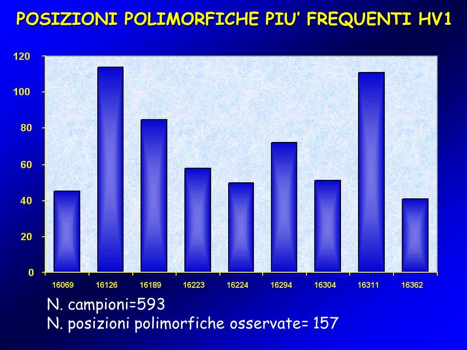 POSIZIONI POLIMORFICHE PIU' FREQUENTI HV1 N. campioni=593 N. posizioni polimorfiche osservate= 157
