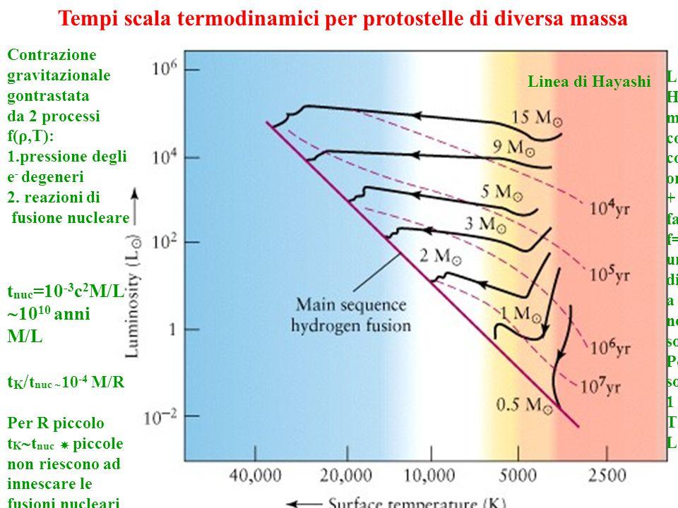 Tempi scala termodinamici per protostelle di diversa massa Contrazione gravitazionale gontrastata da 2 processi f(ρ,T): 1.pressione degli e - degeneri