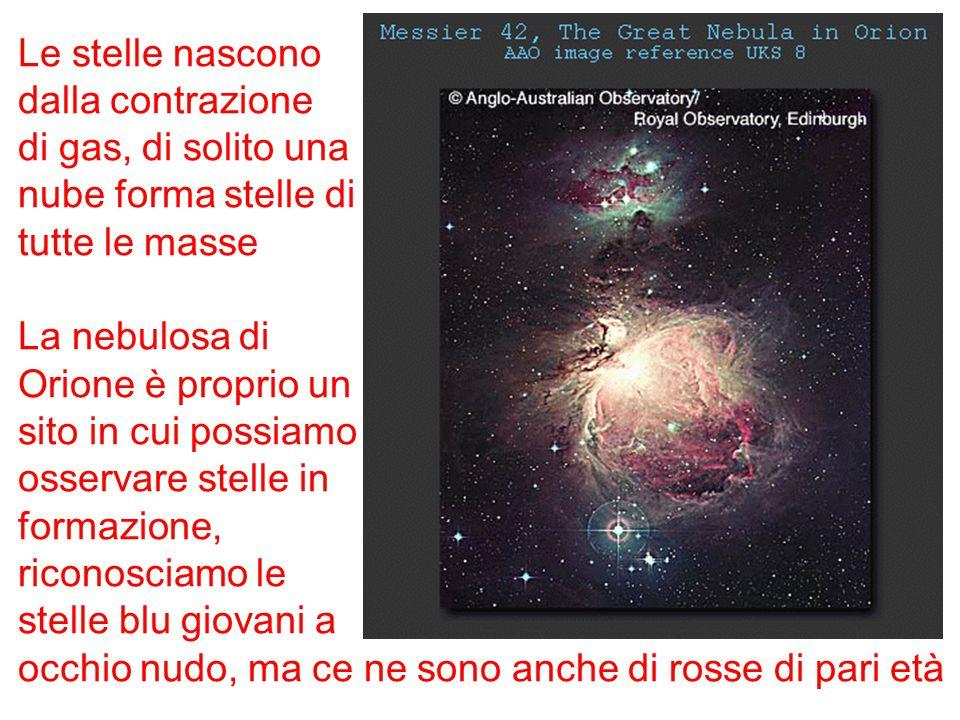 Le stelle nascono dalla contrazione di gas, di solito una nube forma stelle di tutte le masse La nebulosa di Orione è proprio un sito in cui possiamo