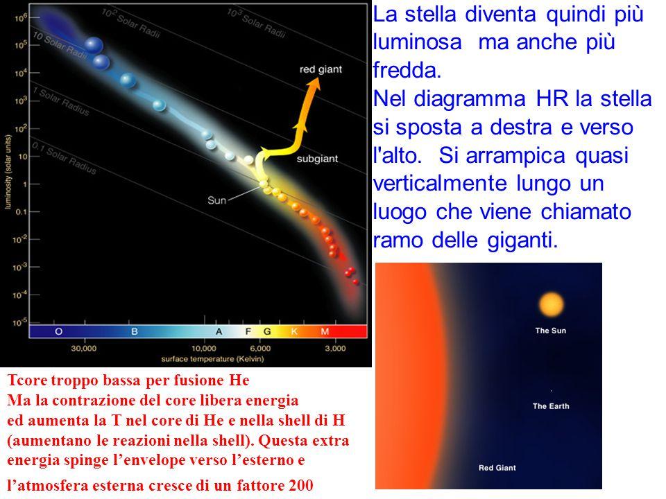 La stella diventa quindi più luminosa ma anche più fredda. Nel diagramma HR la stella si sposta a destra e verso l'alto. Si arrampica quasi verticalme