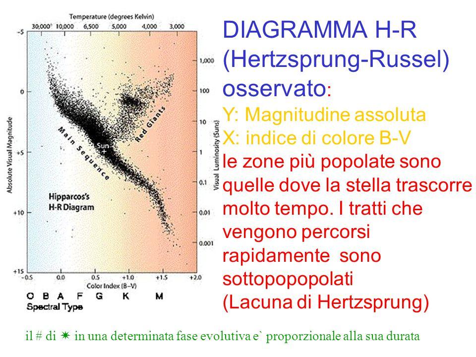 DIAGRAMMA H-R (Hertzsprung-Russel) osservato : Y: Magnitudine assoluta X: indice di colore B-V le zone più popolate sono quelle dove la stella trascor