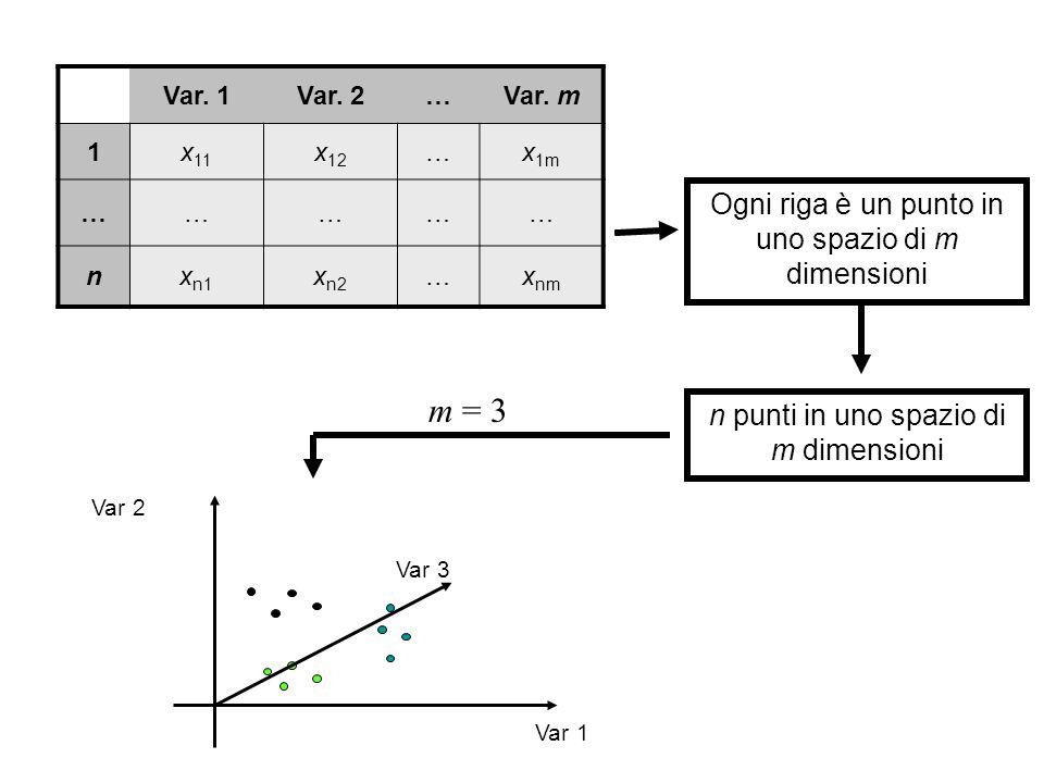 Var. 1Var. 2…Var. m 1x 11 x 12 …x 1m …………… nx n1 x n2 …x nm Ogni riga è un punto in uno spazio di m dimensioni n punti in uno spazio di m dimensioni m