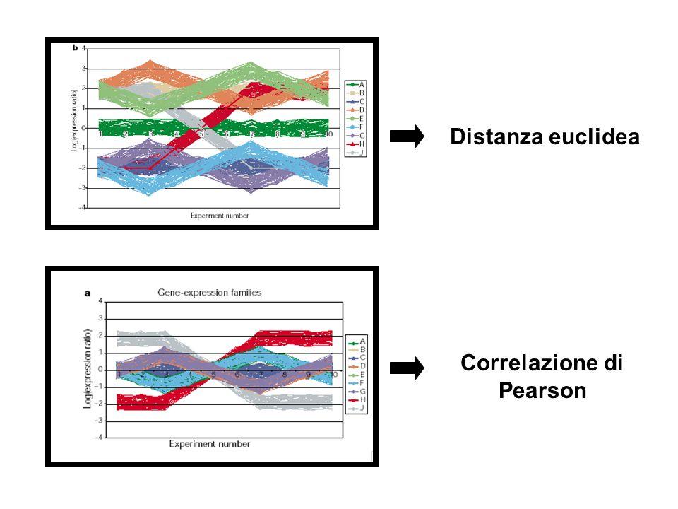 Distanza euclidea Correlazione di Pearson