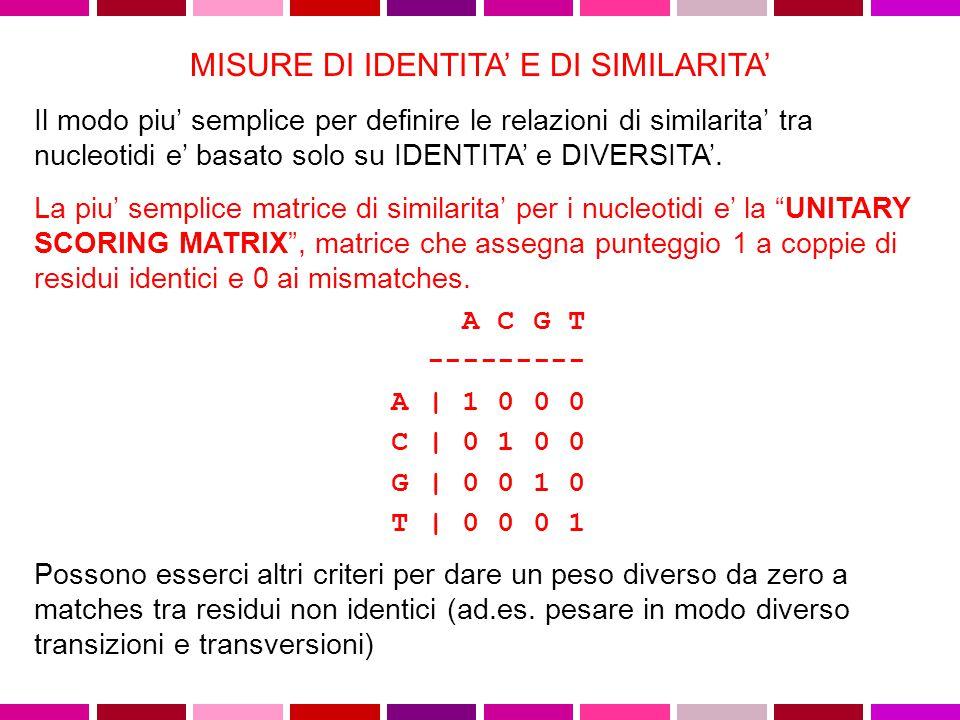 Un metodo molto semplice ed utile per la comparazione di due sequenze e' quello della MATRICE DOTPLOT A|X X X T| X X G| X T| X X A T C A C T G T A C| X | | | | | | | A|X X X A T C A - - G T A C| X T| X X A|X X X +------------------- A T C A G T A