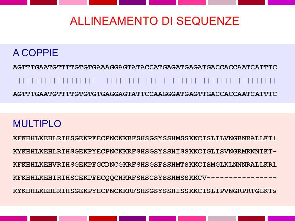 MATRICI PAM L'analisi degli allineamenti mostro' come diverse sostituzioni aminoacidiche si presentassero con frequenze anche molto differenti: le sostituzioni che non alterano seriamente la funzione della proteina, quelle accettate dalla selezione, si osservano piu' di frequente di quelle distruttive .