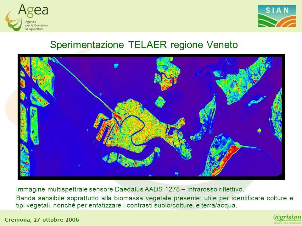 Cremona, 27 ottobre 2006 Sperimentazione TELAER regione Veneto Immagine multispettrale sensore Daedalus AADS 1278 – Infrarosso riflettivo. Banda sensi