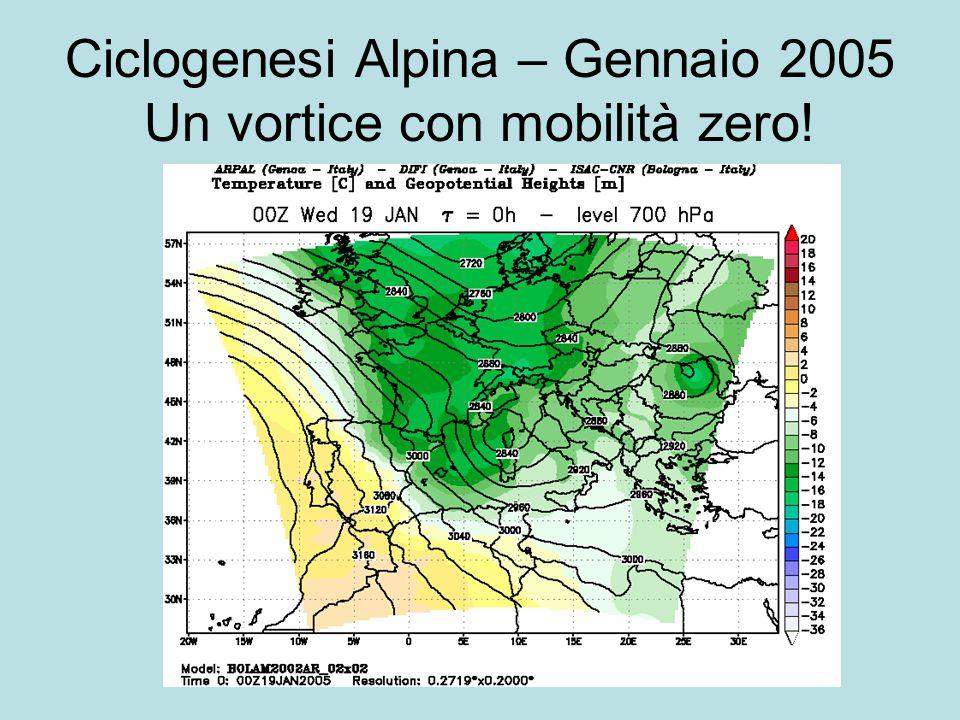 Ciclogenesi Alpina – Gennaio 2005 Un vortice con mobilità zero!