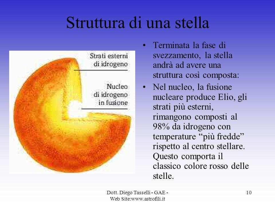 Dott. Diego Tasselli - GAE - Web Site:www.astrofili.it 10 Struttura di una stella Terminata la fase di svezzamento, la stella andrà ad avere una strut