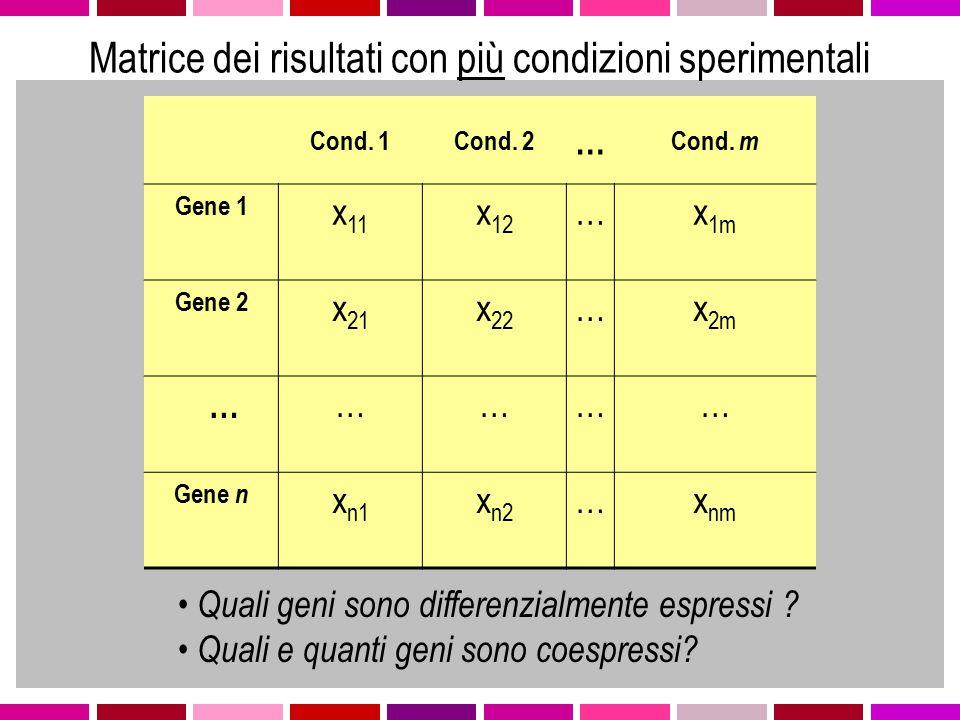 Obiettivi dell'analisi saranno…  Identificazione geni differenzialmente espressi  Identificazione pattern di espressione comuni  Identificazione di geni coespressi con geni di funzione nota