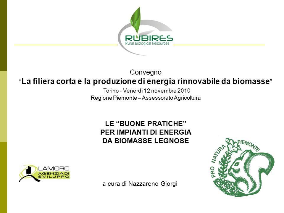 LE BUONE PRATICHE PER IMPIANTI DI ENERGIA DA BIOMASSE LEGNOSE a cura di Nazzareno Giorgi Convegno La filiera corta e la produzione di energia rinnovabile da biomasse Torino - Venerdì 12 novembre 2010 Regione Piemonte – Assessorato Agricoltura