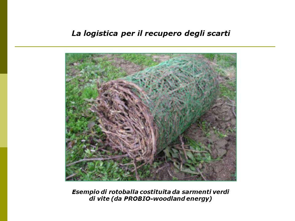 La logistica per il recupero degli scarti Esempio di rotoballa costituita da sarmenti verdi di vite (da PROBIO-woodland energy)