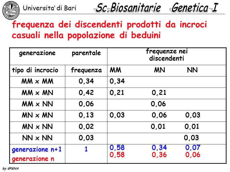 frequenza dei discendenti prodotti da incroci casuali nella popolazione di beduini generazioneparentale frequenze nei discendenti tipo di incrociofreq