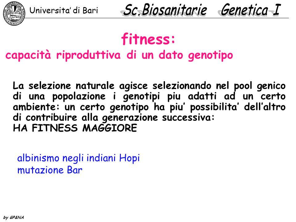 fitness: capacità riproduttiva di un dato genotipo La selezione naturale agisce selezionando nel pool genico di una popolazione i genotipi piu adatti