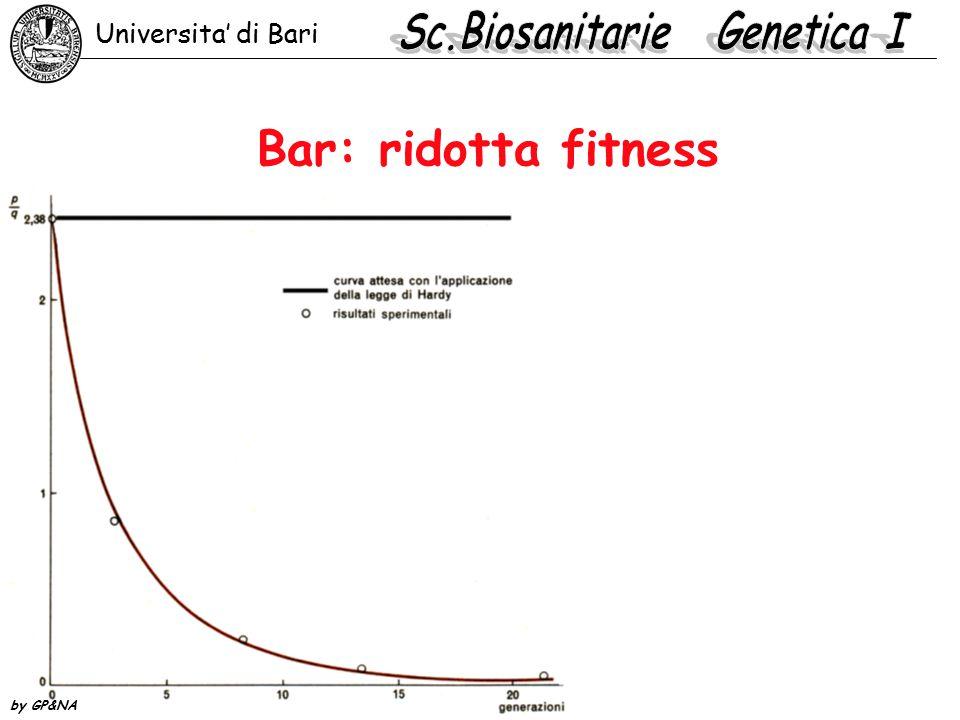 Bar: ridotta fitness Universita' di Bari by GP&NA