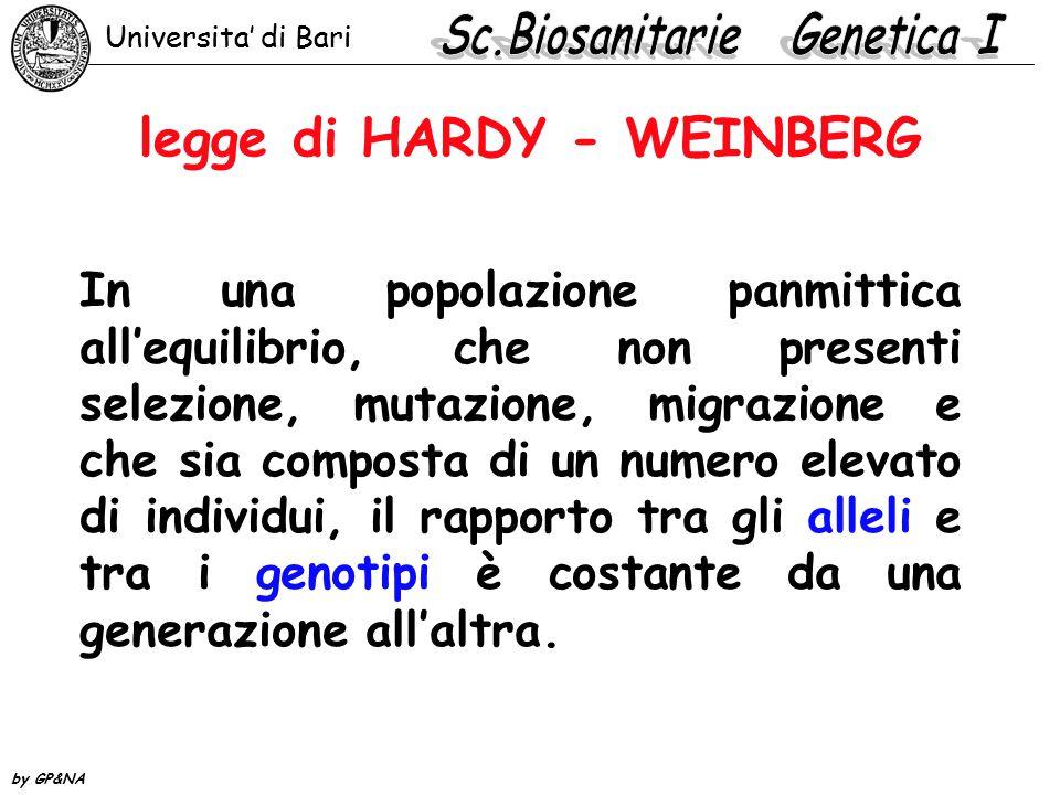 legge di HARDY - WEINBERG In una popolazione panmittica all'equilibrio, che non presenti selezione, mutazione, migrazione e che sia composta di un num