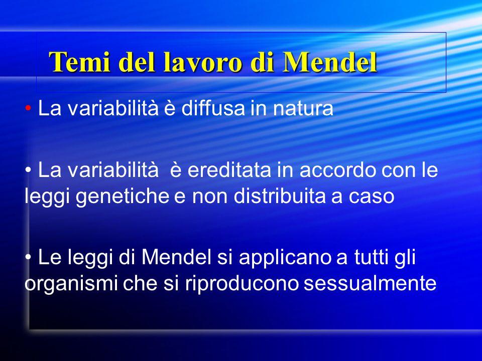 La variabilità è diffusa in natura La variabilità è ereditata in accordo con le leggi genetiche e non distribuita a caso Le leggi di Mendel si applica