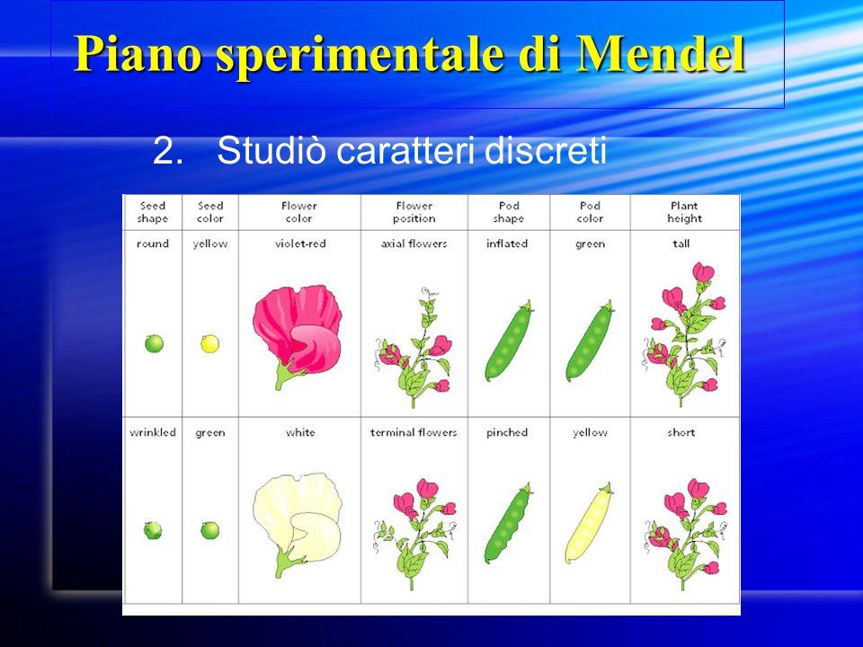 2. Studiò caratteri discreti Piano sperimentale di Mendel Piano sperimentale di Mendel