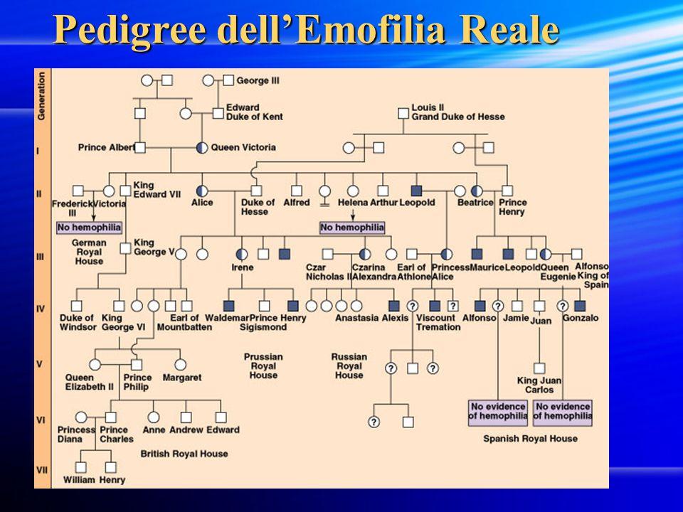 Pedigree dell'Emofilia Reale Pedigree dell'Emofilia Reale