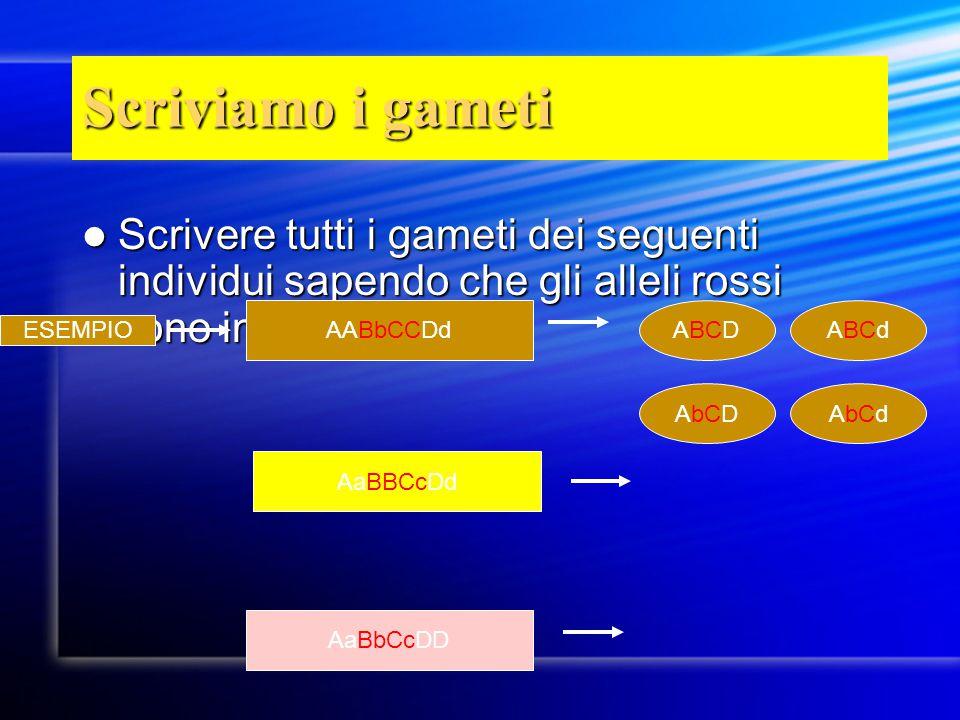 Scriviamo i gameti Scrivere tutti i gameti dei seguenti individui sapendo che gli alleli rossi sono in linkage Scrivere tutti i gameti dei seguenti in