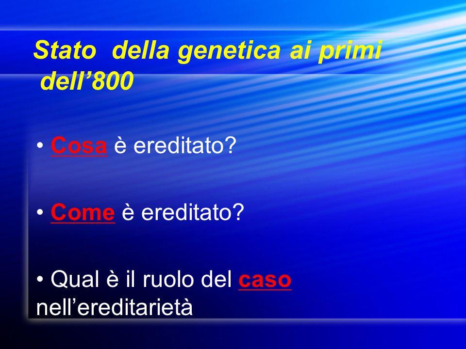Dominanza incompleta Dominanza incompleta Gli eterozigoti danno un colore intermedio Gli eterozigoti danno un colore intermedio Codominanza Codominanza Gli eterozigoti esprimono entrambi i caratteri Gli eterozigoti esprimono entrambi i caratteri Effetti ambientali Effetti ambientali Il grado di espressione dell'allele può dipendere dall'ambiente Il grado di espressione dell'allele può dipendere dall'ambiente Epistasi Epistasi Un gene interferisce con l'espressione di un altro gene Un gene interferisce con l'espressione di un altro gene Oltre le leggi di Mendel Oltre le leggi di Mendel