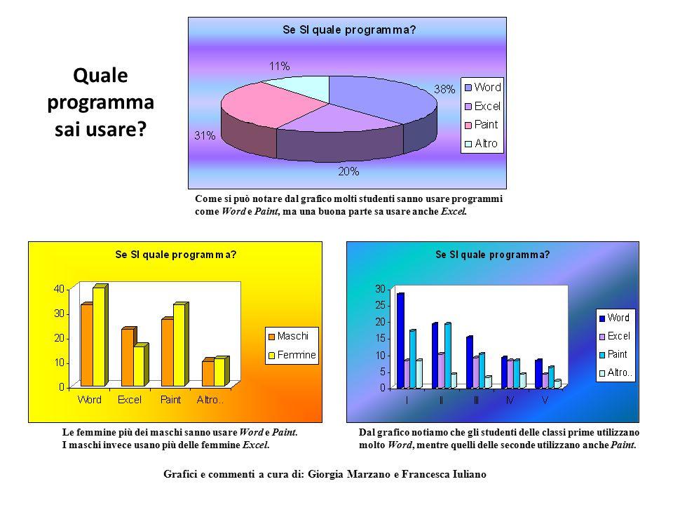 Quale programma sai usare? Come si può notare dal grafico molti studenti sanno usare programmi come Word e Paint, ma una buona parte sa usare anche Ex