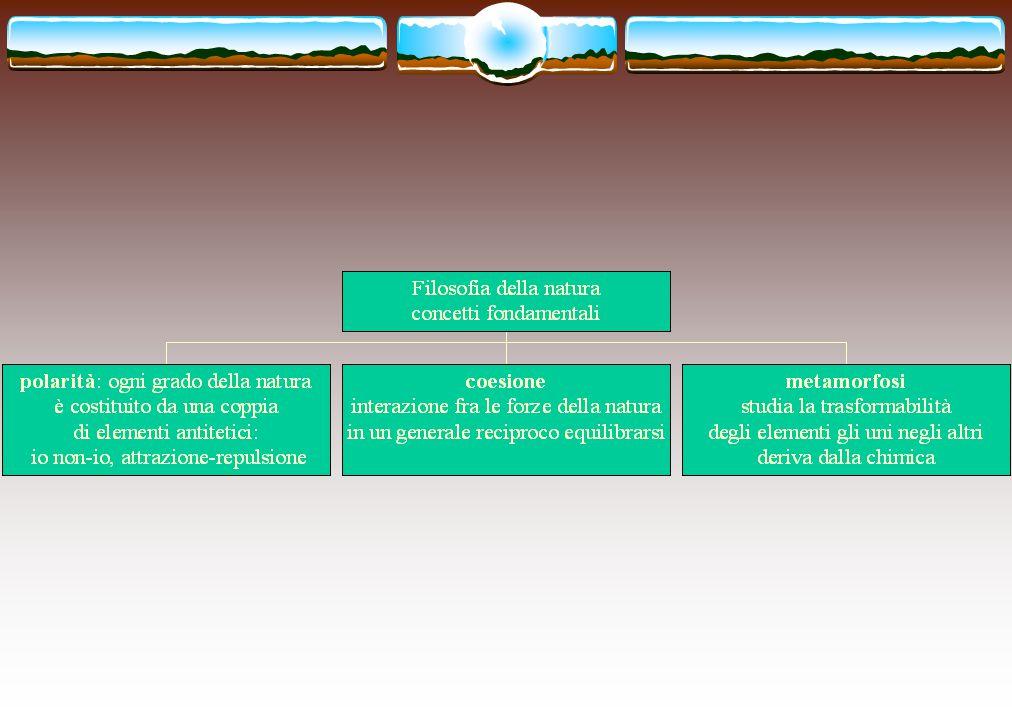 Filosofia della natura  Ogni grado dell'organizzazione naturale riprende e approfondisce la struttura di quello precedente.