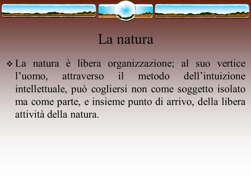 La natura  La natura è libera organizzazione; al suo vertice l'uomo, attraverso il metodo dell'intuizione intellettuale, può cogliersi non come sogge