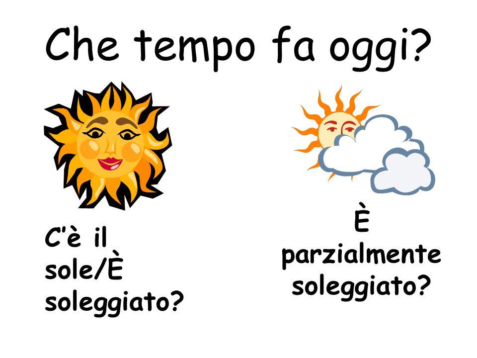 Che tempo fa oggi? C'è il sole/È soleggiato? È parzialmente soleggiato?