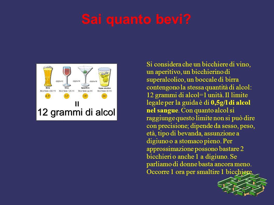 Sai quanto bevi? Si considera che un bicchiere di vino, un aperitivo, un bicchierino di superalcolico, un boccale di birra contengono la stessa quanti