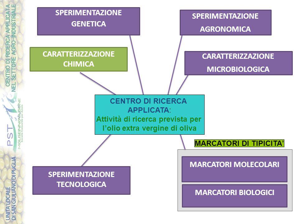 SPERIMENTAZIONE AGRONOMICA MARCATORI MOLECOLARI CARATTERIZZAZIONE MICROBIOLOGICA SPERIMENTAZIONE GENETICA SPERIMENTAZIONE TECNOLOGICA CARATTERIZZAZIONE CHIMICA MARCATORI BIOLOGICI MARCATORI DI TIPICITA' CENTRO DI RICERCA APPLICATA: Attività di ricerca prevista per l'olio extra vergine di oliva