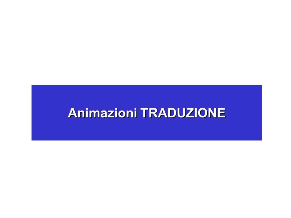 Animazioni TRADUZIONE