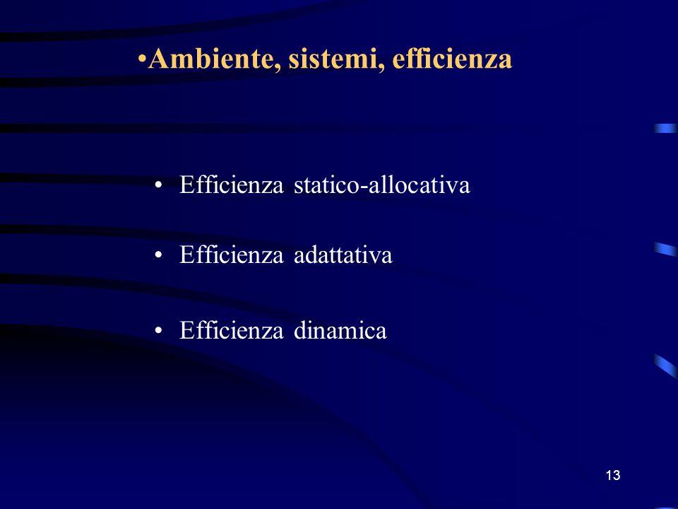 12 Caratterizzazione dell'ambiente Stazionario o altamente prevedibile Dinamico (vari tipi di incertezza) Complesso Sistemi: –chiusi –cibernetici –aperti
