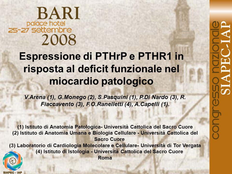 Le premesse del presente lavoro hanno origine da un nostro precedente studio orientato alla dimostrazione dell'espressione immunoistochimica del Parathyroid Hormone Related Protein (PTHrP) e del Parathyroid Hormone Receptor (PTHR1) da parte del miocardio ventricolare umano prelevato da casi autoptici.