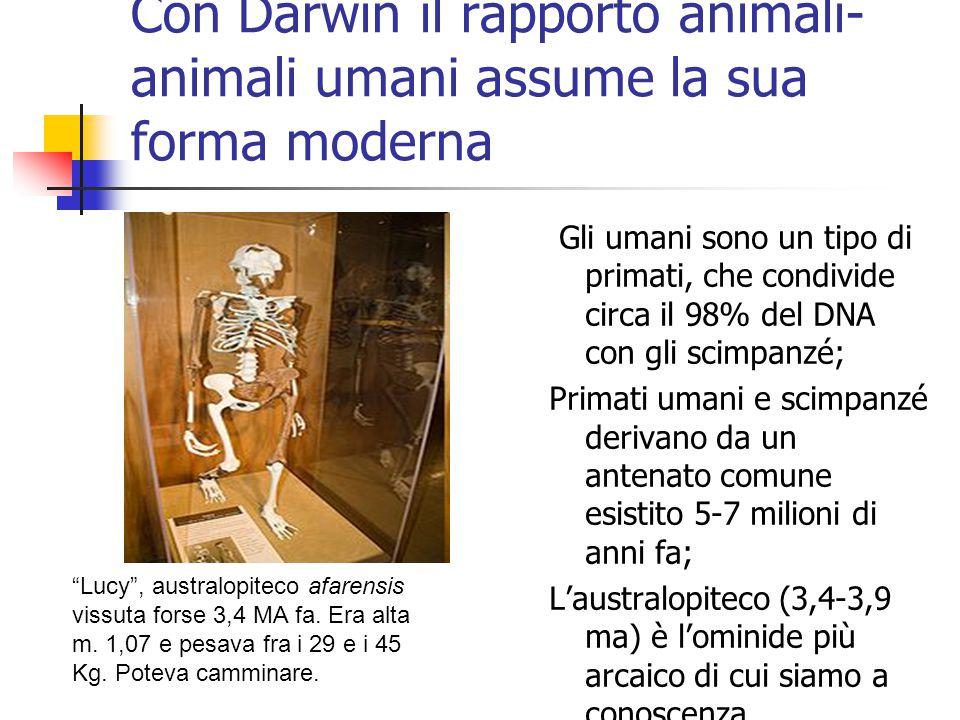 Con Darwin il rapporto animali- animali umani assume la sua forma moderna Gli umani sono un tipo di primati, che condivide circa il 98% del DNA con gl