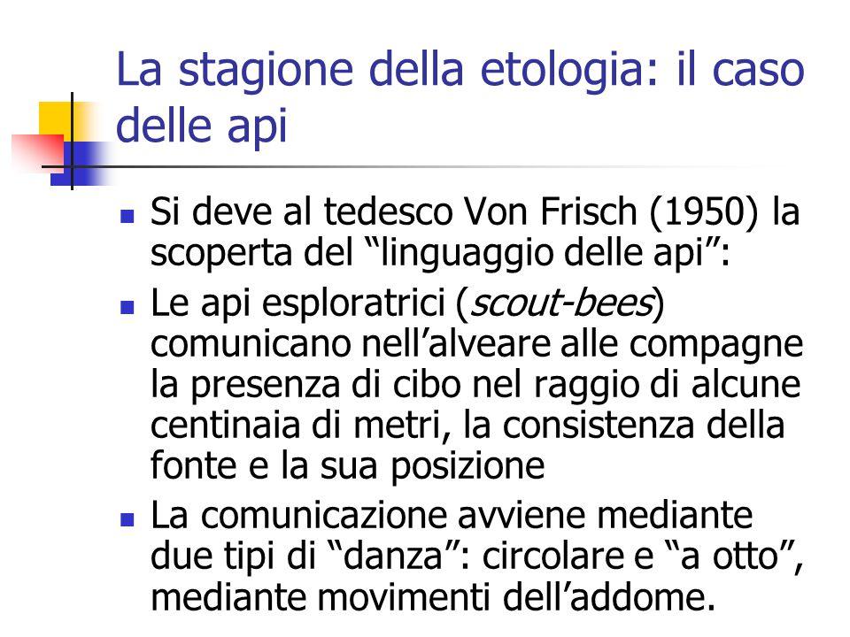 """La stagione della etologia: il caso delle api Si deve al tedesco Von Frisch (1950) la scoperta del """"linguaggio delle api"""": Le api esploratrici (scout-"""