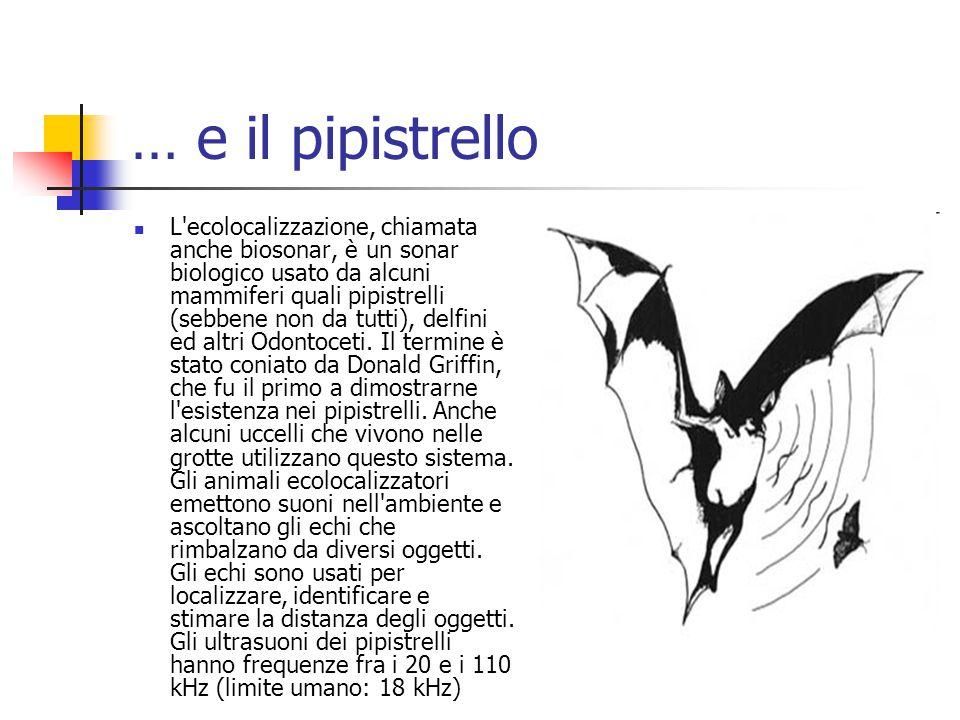 … e il pipistrello L'ecolocalizzazione, chiamata anche biosonar, è un sonar biologico usato da alcuni mammiferi quali pipistrelli (sebbene non da tutt