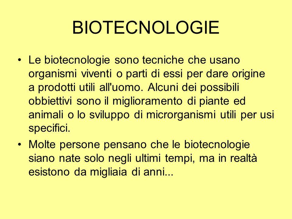 BIOTECNOLOGIE Le biotecnologie sono tecniche che usano organismi viventi o parti di essi per dare origine a prodotti utili all'uomo. Alcuni dei possib