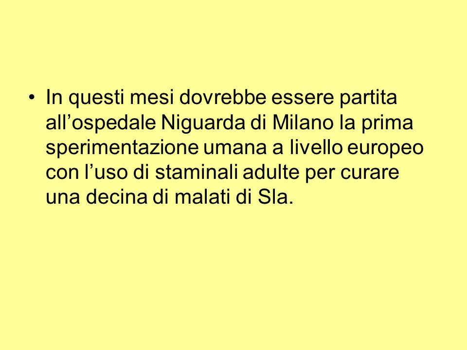In questi mesi dovrebbe essere partita all'ospedale Niguarda di Milano la prima sperimentazione umana a livello europeo con l'uso di staminali adulte