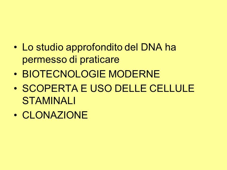 Lo studio approfondito del DNA ha permesso di praticare BIOTECNOLOGIE MODERNE SCOPERTA E USO DELLE CELLULE STAMINALI CLONAZIONE