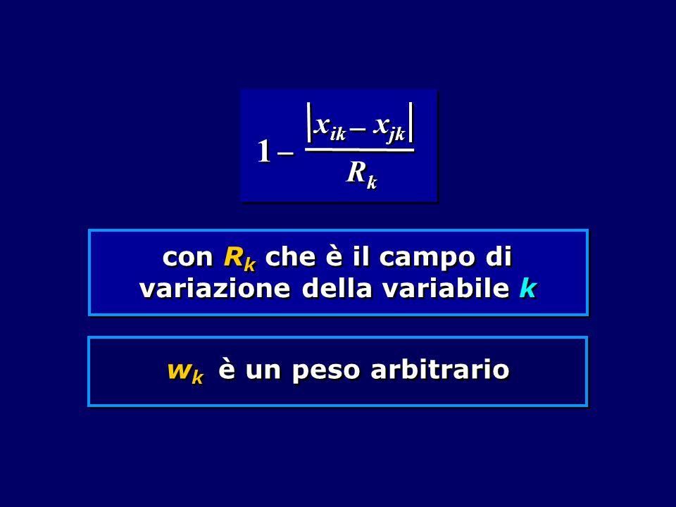 con R k che è il campo di variazione della variabile k w k è un peso arbitrario RkRk RkRk x ik     1 1 x jk