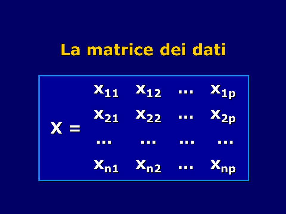 La matrice dei dati X = x 11 x 12 … x 1p x 21 x 22 … x 2p...... …... x n1 x n2 … x np