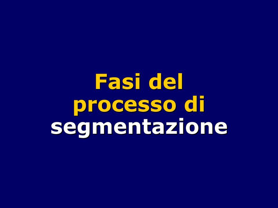 Fasi del processo di segmentazione