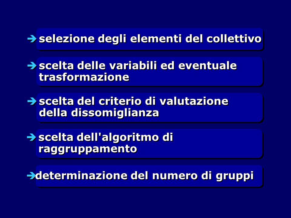  selezione degli elementi del collettivo  scelta delle variabili ed eventuale trasformazione  scelta del criterio di valutazione della dissomiglianza  scelta dell algoritmo di raggruppamento  determinazione del numero di gruppi