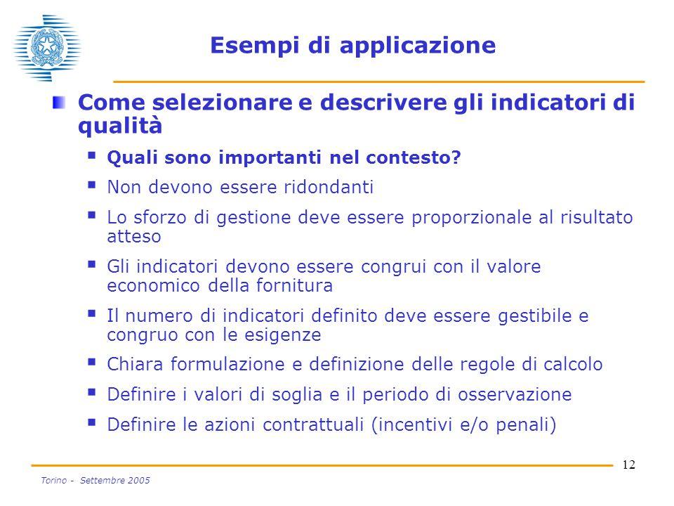 12 Torino - Settembre 2005 Esempi di applicazione Come selezionare e descrivere gli indicatori di qualità  Quali sono importanti nel contesto.