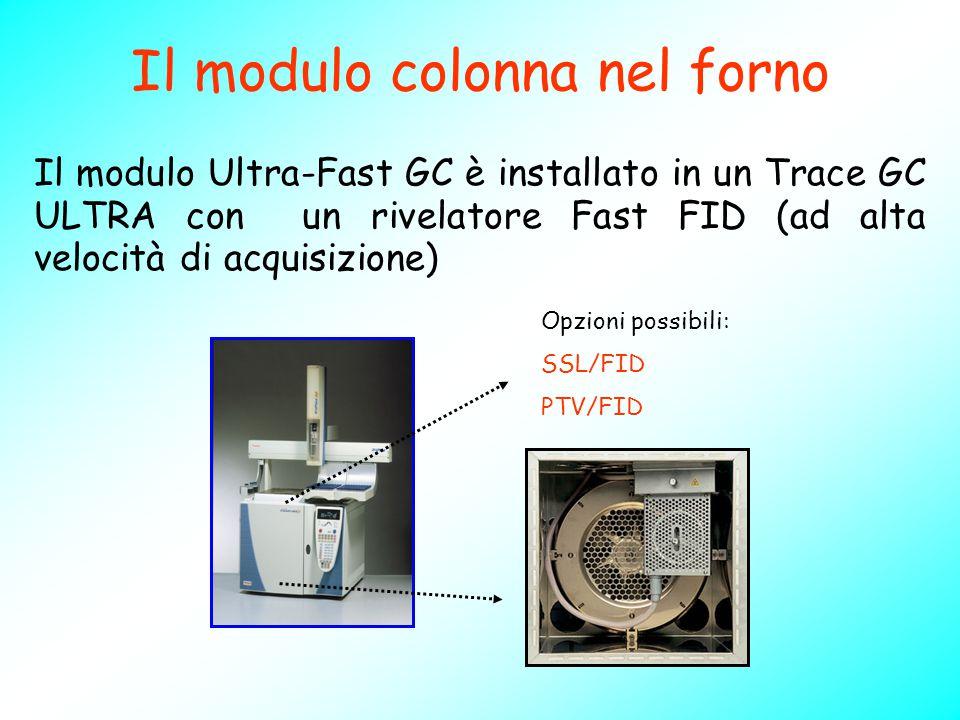 Il modulo colonna nel forno Il modulo Ultra-Fast GC è installato in un Trace GC ULTRA con un rivelatore Fast FID (ad alta velocità di acquisizione) Op