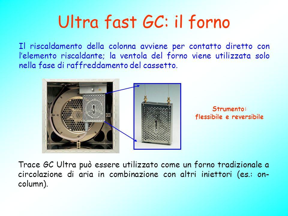 Ultra fast GC: il forno Trace GC Ultra può essere utilizzato come un forno tradizionale a circolazione di aria in combinazione con altri iniettori (es