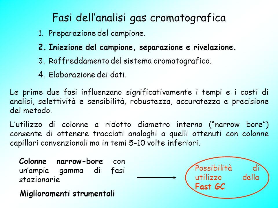 Fasi dell'analisi gas cromatografica 1.Preparazione del campione. 2.Iniezione del campione, separazione e rivelazione. 3.Raffreddamento del sistema cr