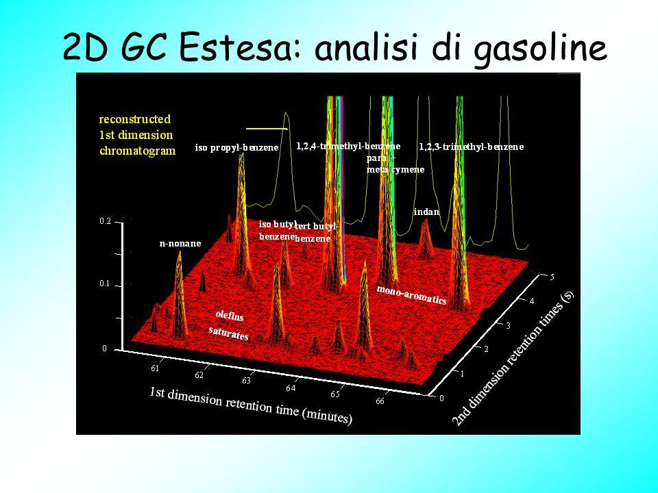 2D GC Estesa: analisi di gasoline