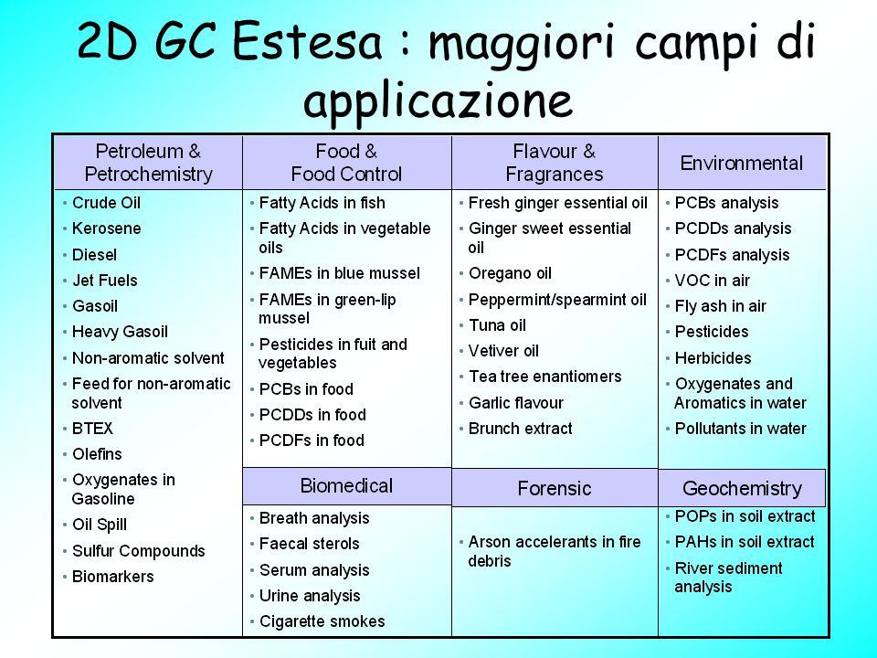 2D GC Estesa : maggiori campi di applicazione